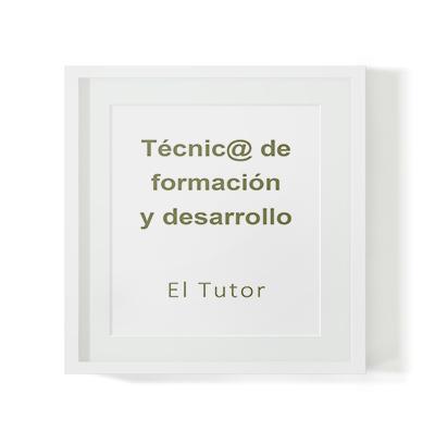 Selección de técnico en formación y desarrollo